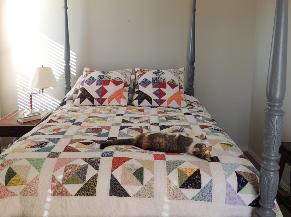 Long View of Scrappy Quilt and New Split Star Pillows