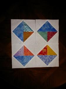 RhoO-TiaS-Blocks