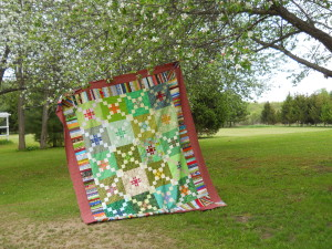big quilts star cross mystery 005